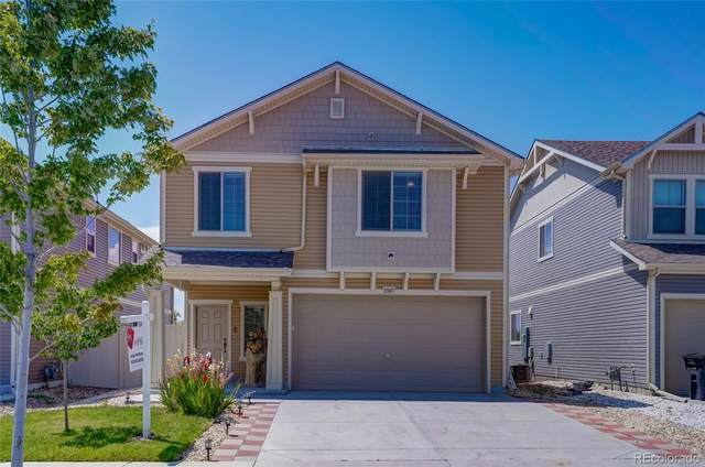 5565 Cathay Court, Denver, CO 80249 (MLS #4840142) :: 8z Real Estate