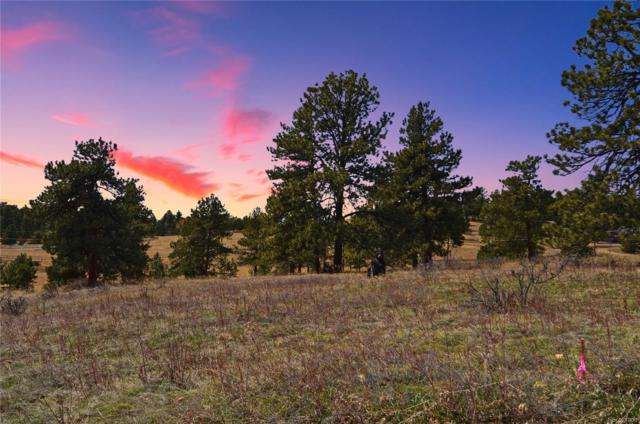 A4 Ridge Way, Golden, CO 80401 (#4840635) :: Structure CO Group