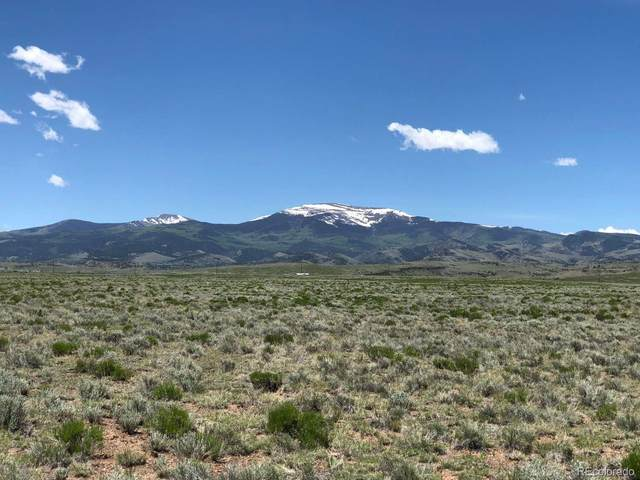 Lariat Road, Monte Vista, CO 81144 (#4844779) :: The Healey Group