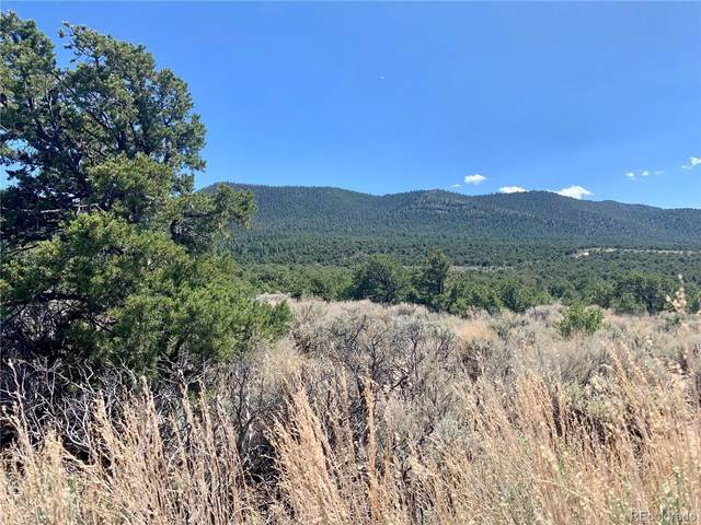 Lot 2287 Oro Road, Fort Garland, CO 81133 (MLS #4845228) :: Bliss Realty Group