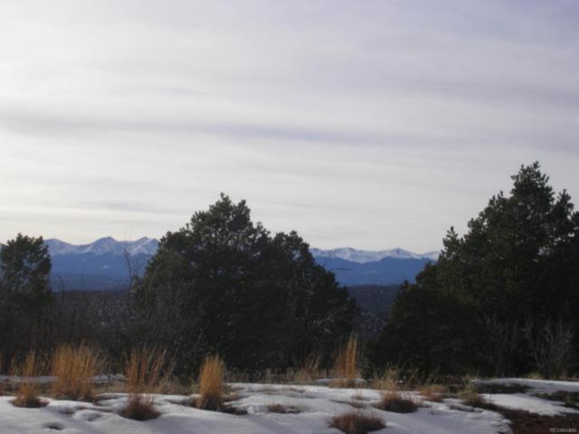 Primero Ranch, Weston, CO 81091 (MLS #4846474) :: 8z Real Estate