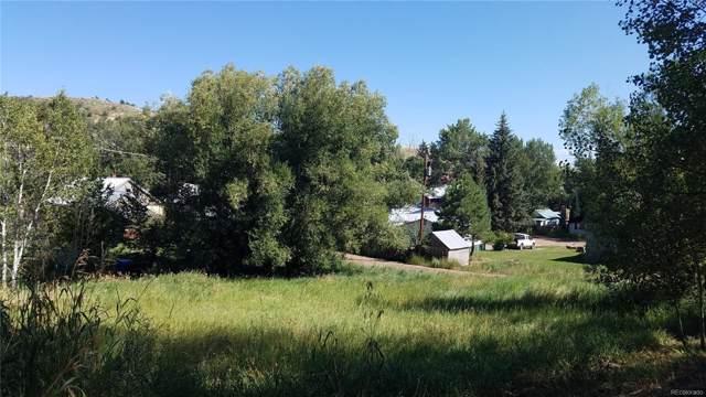 2nd Street, Oak Creek, CO 80467 (MLS #4847644) :: 8z Real Estate