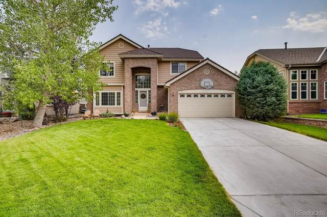 89 Dawn Heath Circle, Littleton, CO 80127 (MLS #4847978) :: 8z Real Estate