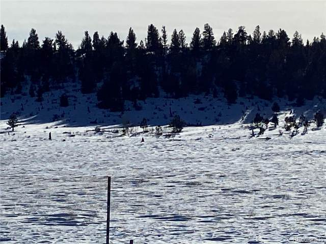 Salt Ranch Trail, Hartsel, CO 80449 (#4848979) :: The DeGrood Team
