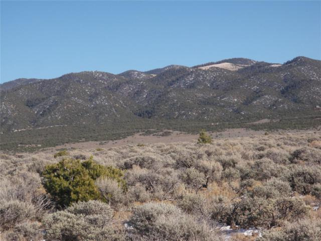 Vacant Land, San Luis, CO 81133 (#4848994) :: My Home Team
