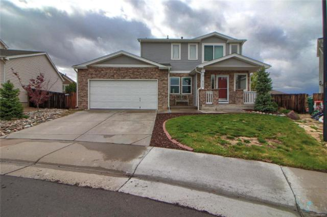 8205 Eagleview Drive, Littleton, CO 80125 (#4849699) :: The Pete Cook Home Group