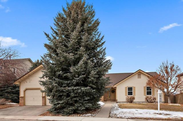 4665 Shooting Star Way, Castle Rock, CO 80109 (#4851661) :: The HomeSmiths Team - Keller Williams