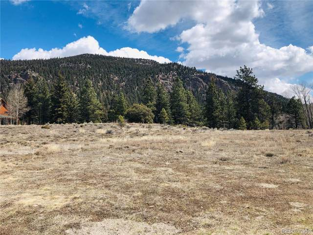 Lot 44 River Run Drive, Antonito, CO 81120 (#4853664) :: Real Estate Professionals