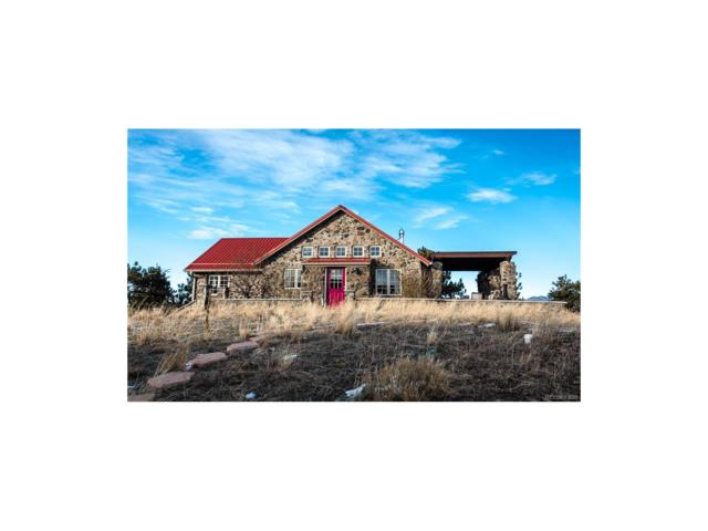 5798 Co Road 116 Road, Lake George, CO 80827 (MLS #4855541) :: 8z Real Estate