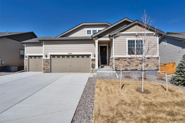 7287 Greenwater Circle, Castle Rock, CO 80108 (#4862384) :: The HomeSmiths Team - Keller Williams