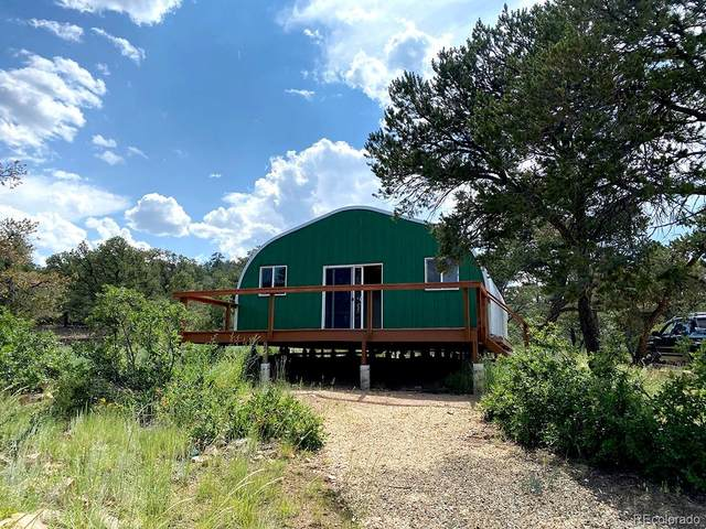 1039 43rd Trail, Cotopaxi, CO 81223 (#4862424) :: The Artisan Group at Keller Williams Premier Realty