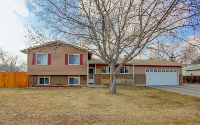 2031 Hampshire Road, Fort Collins, CO 80526 (#4864902) :: The Peak Properties Group