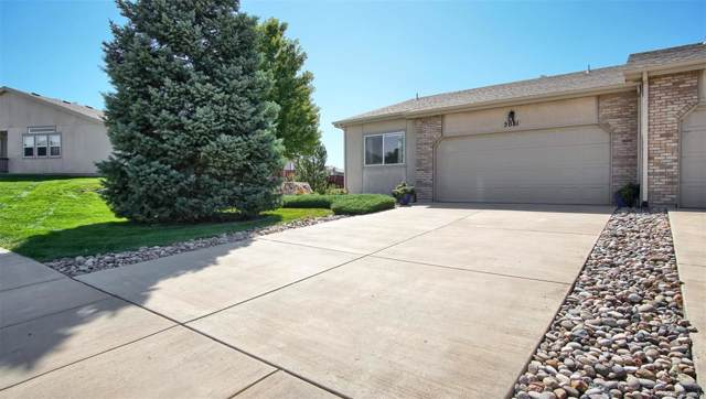 5081 Rill Valley Way, Colorado Springs, CO 80911 (#4867794) :: The DeGrood Team