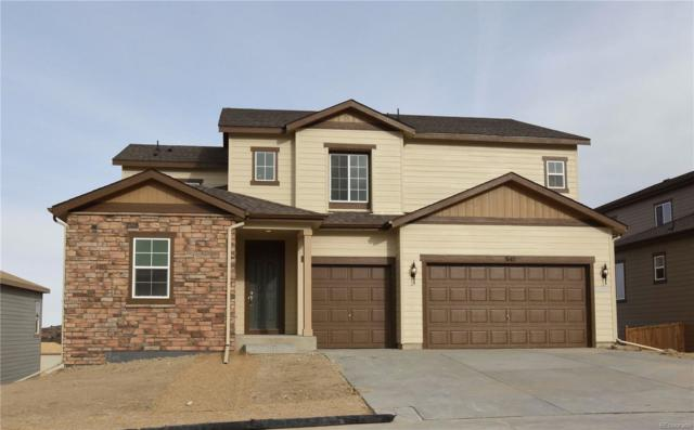 3142 Barbwire Way, Castle Rock, CO 80108 (#4868493) :: The Griffith Home Team