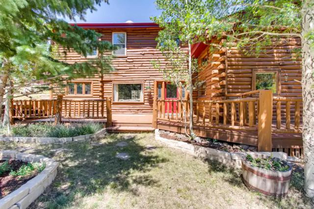 347 S Pine Drive, Bailey, CO 80421 (#4868916) :: Bring Home Denver