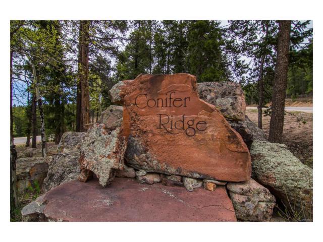 26830 Longview Drive, Conifer, CO 80433 (MLS #4871315) :: 8z Real Estate