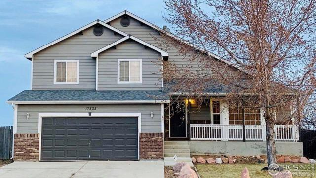 17333 Margil Road, Mead, CO 80542 (#4872731) :: The Healey Group
