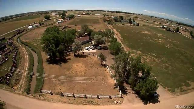 10810 County Road 22, Fort Lupton, CO 80621 (MLS #4874602) :: 8z Real Estate