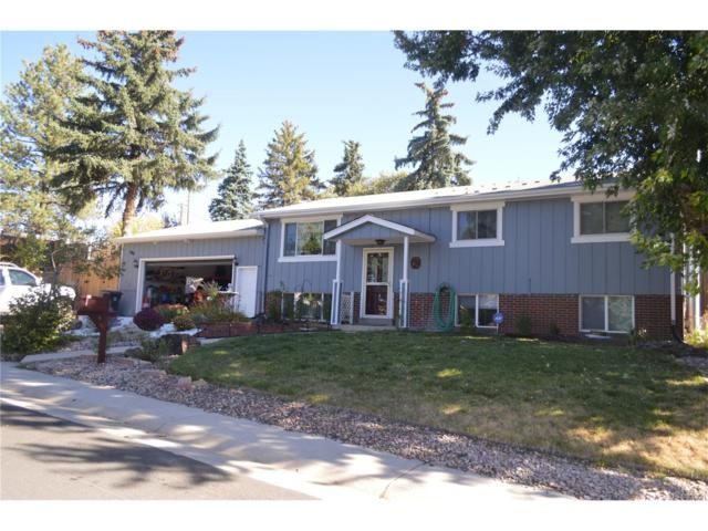 300 Hillside Drive, Castle Rock, CO 80104 (MLS #4874848) :: 8z Real Estate