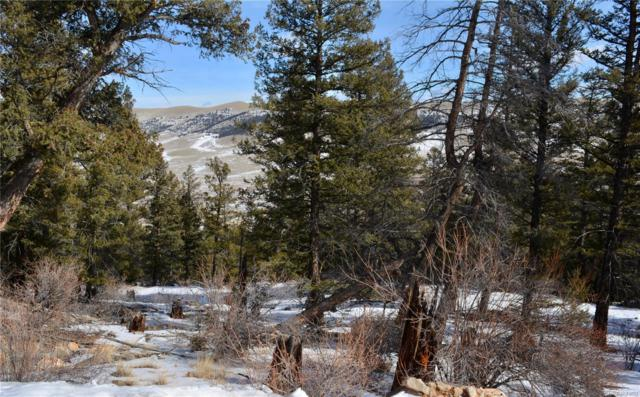 0 Middle Fork Vista Road, Fairplay, CO 80440 (#4880902) :: The Peak Properties Group