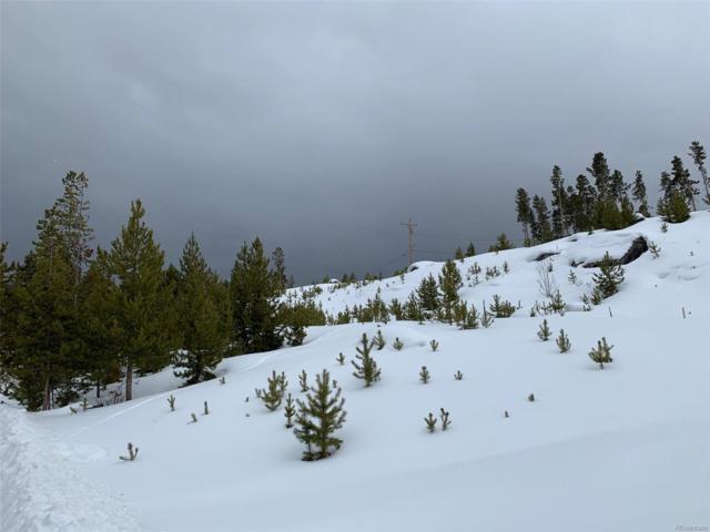 Portal, Grand Lake, CO 80447 (#4880904) :: My Home Team