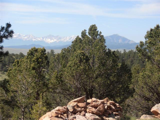Choctaw Trail, Westcliffe, CO 81252 (#4881511) :: RazrGroup