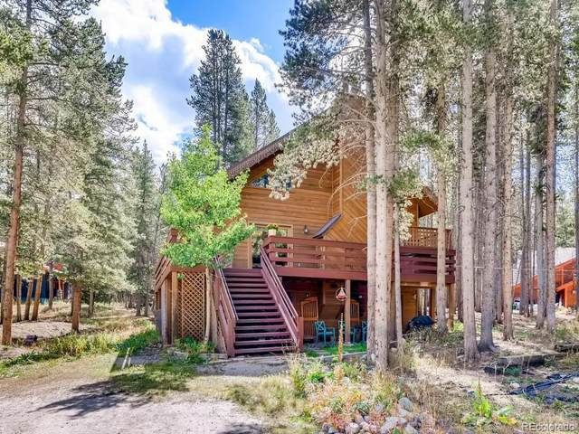 338 Blue River Road, Blue River, CO 80424 (#4890248) :: The DeGrood Team