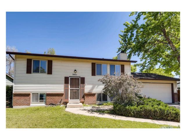 3831 E 122nd Avenue, Thornton, CO 80241 (#4891630) :: The Peak Properties Group
