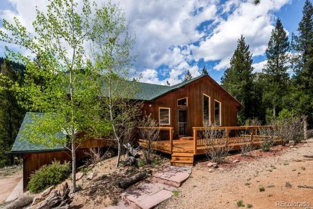 15046 Trailwood Way, Pine, CO 80470 (#4892450) :: Berkshire Hathaway Elevated Living Real Estate