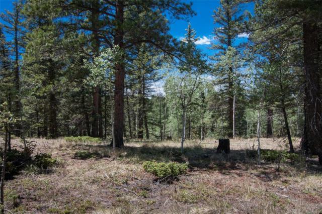 427 Black Bear Drive, Divide, CO 80814 (MLS #4894993) :: 8z Real Estate