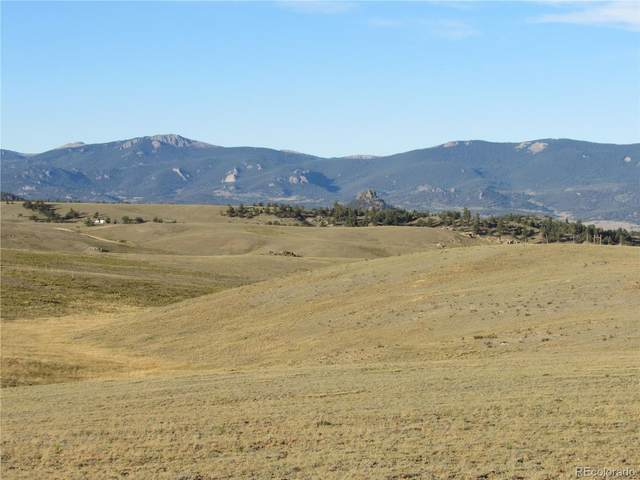 114 Andesite Way, Hartsel, CO 80449 (MLS #4898331) :: 8z Real Estate