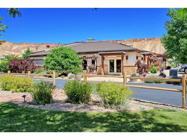 3708 G Road, Palisade, CO 81526 (MLS #4899151) :: 8z Real Estate