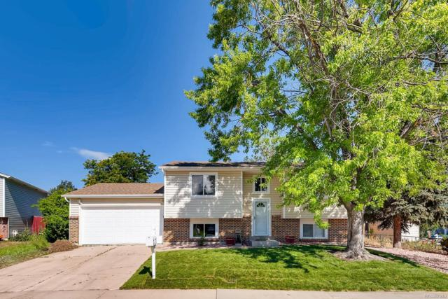11785 Albion Street, Thornton, CO 80233 (#4903511) :: The Peak Properties Group