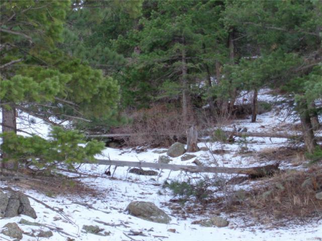 2811 Gross Dam Road, Golden, CO 80403 (MLS #4904705) :: 8z Real Estate