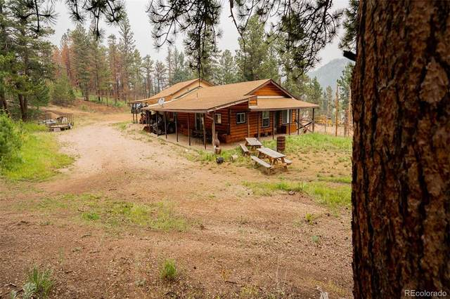 6081 W County Road 68C, Red Feather Lakes, CO 80545 (#4906386) :: The DeGrood Team