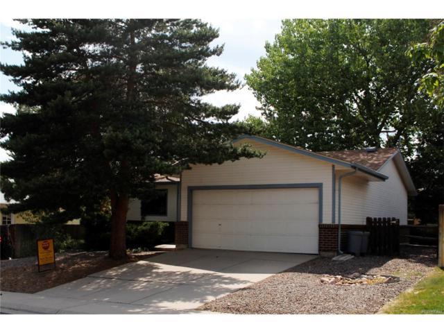2357 S Eldridge Court, Lakewood, CO 80228 (MLS #4906926) :: 8z Real Estate