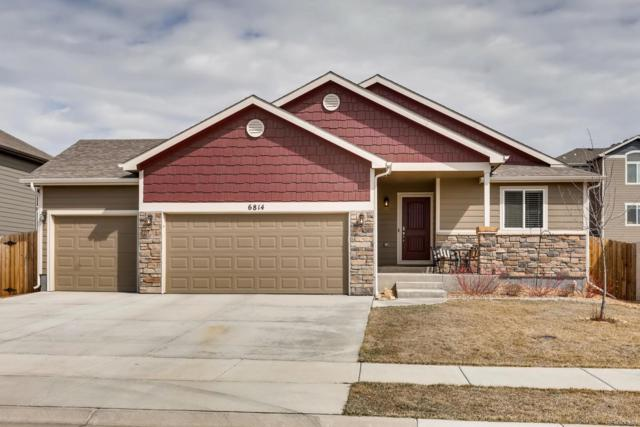 6814 Blue Spruce Street, Frederick, CO 80530 (#4907956) :: The Heyl Group at Keller Williams