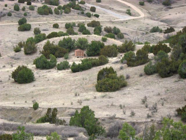 5 Muddy Creek Roads, Pueblo, CO 81004 (MLS #4914397) :: 8z Real Estate