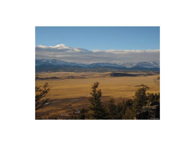 Lot 195 Middle Fork Vista, Fairplay, CO 80440 (#4914436) :: The Peak Properties Group
