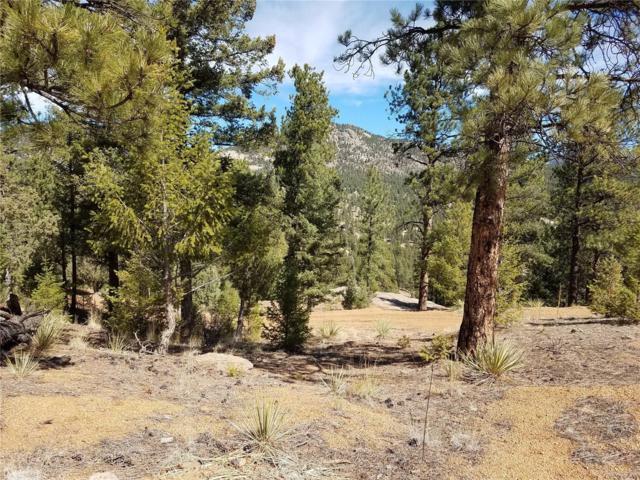 15537 S Elk Creek Road, Pine, CO 80470 (MLS #4914549) :: 8z Real Estate