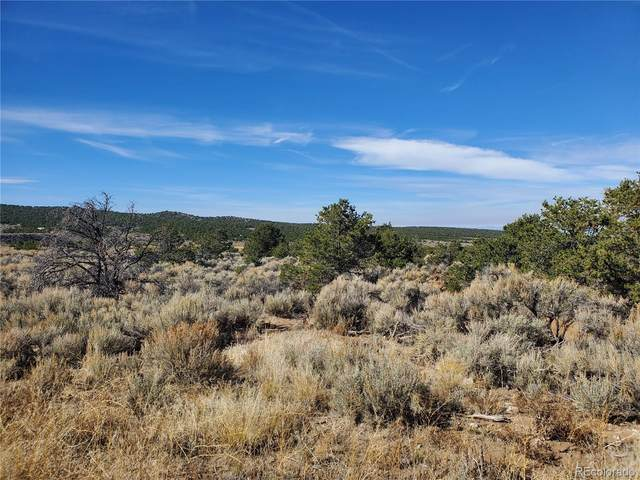 1317 Michaels Road, San Luis, CO 81152 (MLS #4916539) :: Bliss Realty Group