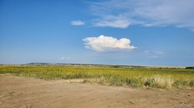 Lot 3 Hawks Prairie Road, Rye, CO 81069 (#4919597) :: Re/Max Structure