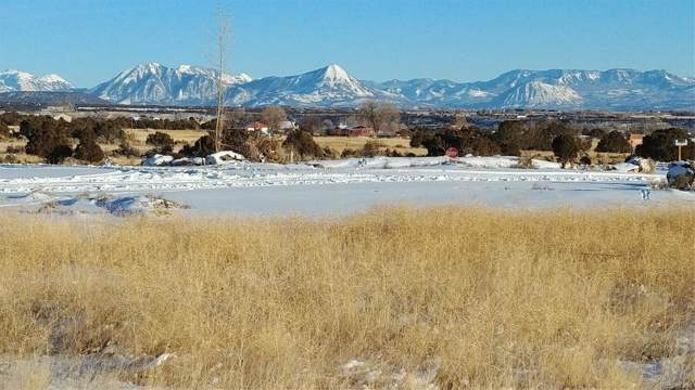 Summit Court, Cedaredge, CO 81413 (MLS #4922965) :: Colorado Real Estate : The Space Agency