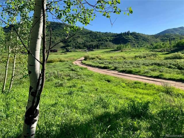 32515 Ute Trail, Oak Creek, CO 80467 (#4928845) :: The DeGrood Team
