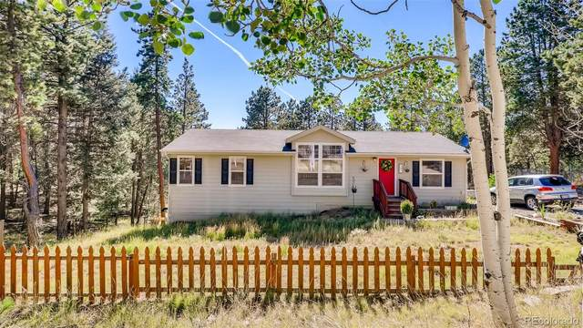 391 Kutsu Ridge Road, Florissant, CO 80816 (#4929075) :: The DeGrood Team