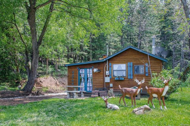 22784 Hagler Drive, Golden, CO 80401 (MLS #4929278) :: Bliss Realty Group