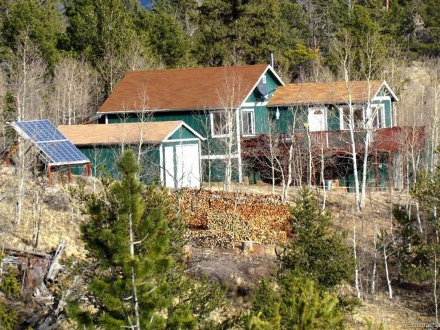 443 Crooked Rock Path, Como, CO 80432 (#4930798) :: The DeGrood Team