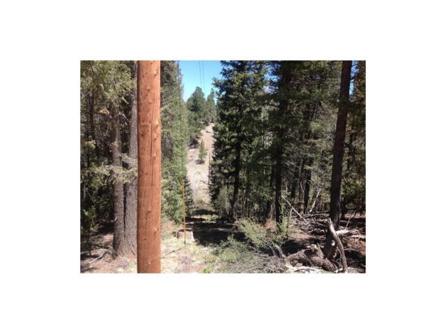 2539 N Mountain Estates Road, Florissant, CO 80816 (#4931029) :: The DeGrood Team