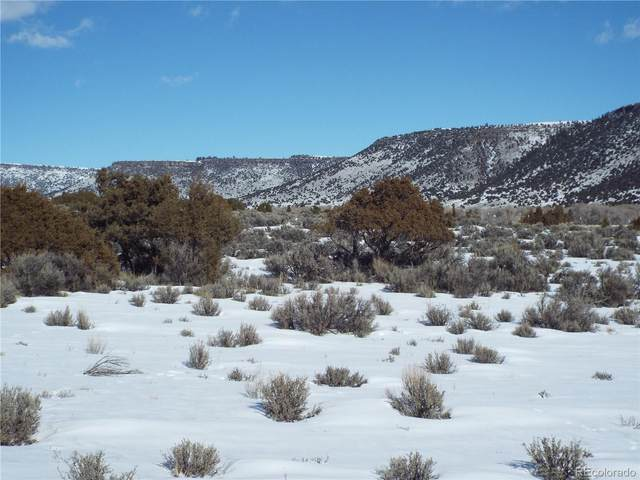 lot 8 Conejos Trail, Antonito, CO 81120 (#4934632) :: The DeGrood Team
