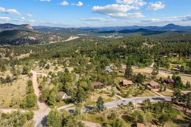 389 S Pine Drive, Bailey, CO 80421 (#4935147) :: The Artisan Group at Keller Williams Premier Realty